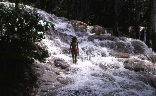 Dunns river 79 cropped