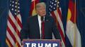 Trump and weiner