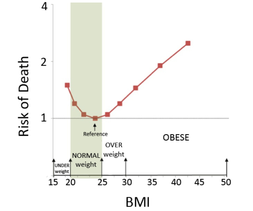 BMI rippetoe graph
