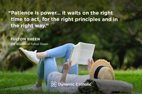 Patience is power sheen