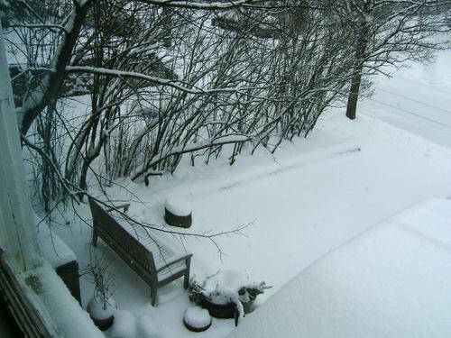Brigid_snow_22208_003