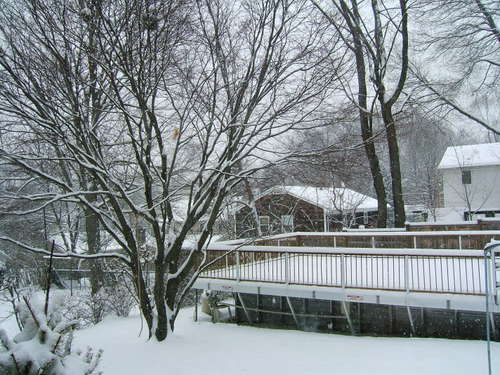 Brigid_snow_22208_007