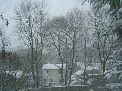 Brigid_snow_22208_015
