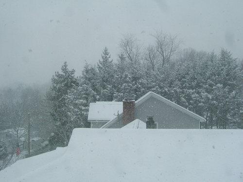 Brigid_snow_22208_016